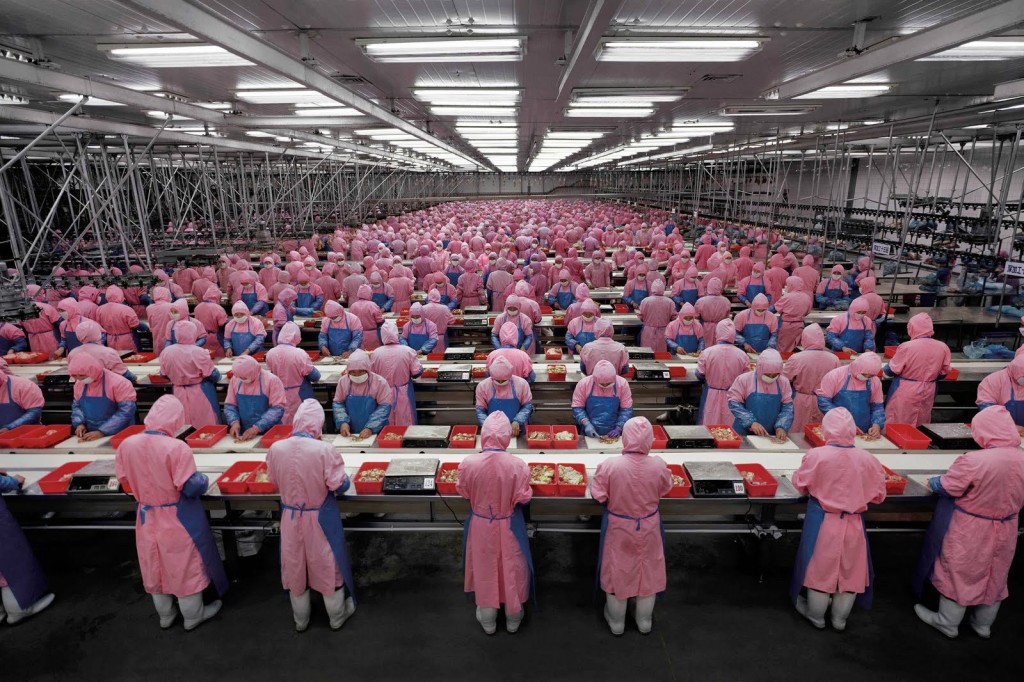 """Manufacturing #17"", Deda Chicken Processing Plant, Dehui City, Jilin Province, 2005"