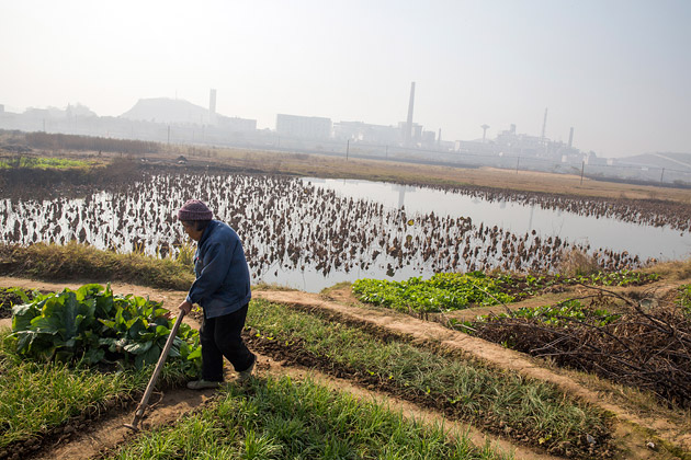 """The capitalist transformation of rural China: Evidence from """"Agrarian Change in Contemporary China"""""""